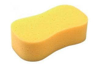 Draper Sponge